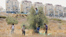 Audio «Rabbis im Einsatz für die Menschenrechte» abspielen
