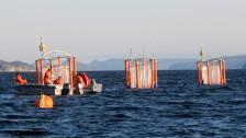 Audio «Ozean im Stresstest» abspielen