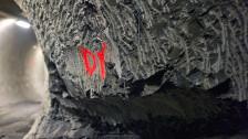 Audio «Opalinuston – das prominenteste Schweizer Gestein» abspielen