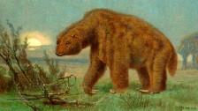 Audio «Riesenfaultiere – und die weitreichenden Folgen ihres Aussterbens» abspielen