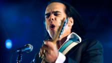 Audio «Nick Cave live aus Berlin» abspielen
