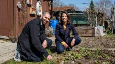 Audio «INPUT STORY: Mona Vetsch macht ihren Garten wild» abspielen