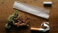 Audio «Die Cannabis-Revolution von unten» abspielen