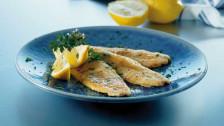 Audio «Kochkunst ennet dem Fisch-Stäbli» abspielen