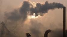 Audio «Luftverschmutzung kann Lungenkrebs auslösen» abspielen