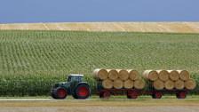 Audio «WTO-Abkommen: Landwirtschaft atmet auf» abspielen