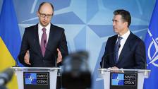 Audio «Die Nato engagiert sich für die Ukraine» abspielen