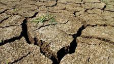 Audio «Klimaerwärmung: Handeln ist angesagt» abspielen