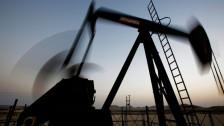Audio «Billiges Öl macht OPEC nervös» abspielen