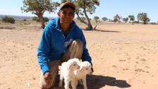 Audio «Navajo-Land in Rohstoffhand» abspielen