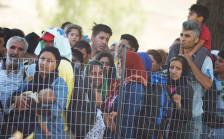 Audio ««Der Kampf gegen Schlepper bringt den Flüchtlingen nichts»» abspielen