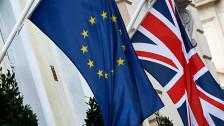 Audio «Das Angebot der EU an Premier Cameron und das britische Volk» abspielen