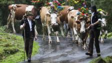 Audio «Altersvorsorge: Mit 70 Franken die Bauern locken» abspielen
