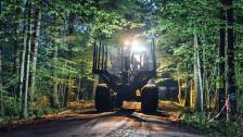 Audio «Polnischer Urwald in Bedrängnis» abspielen