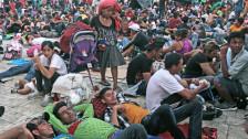 Audio «Flüchtlinge aus Honduras werden zum Wahlkampfthema» abspielen