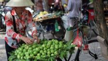 Audio ««Pestizid-Kontrolle bei entfernten Lieferanten ist schwierig»» abspielen