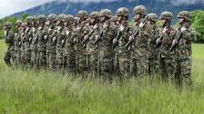 Audio «Parteien wollen keinen zweiwöchigen WK für Soldaten» abspielen
