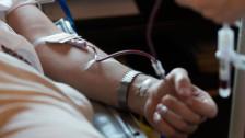 Audio «Homosexuelle Männer sollen unter Bedingungen Blut spenden dürfen» abspielen
