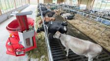 Audio «Wieso wird Landwirtschaft immer teurer?» abspielen