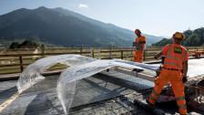 Audio «Forschungsprogramm zur Qualität von Schweizer Boden» abspielen