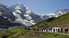 Audio «Tourismus in der Schweiz im Aufwind» abspielen