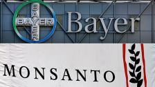 Audio «Bayer buhlt um US-Konzern Monsanto» abspielen