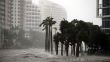 Audio «Versicherungen können von Irma auch profitieren» abspielen