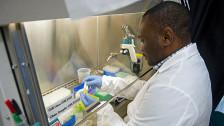 Audio «Kampf gegen Ebola - intransparente Medikamententests» abspielen
