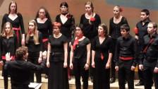 Audio «Schweizer Jugendchor: 20 Jahre jung» abspielen