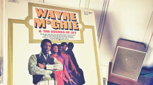 Audio «The Story Of Wayne McGhie & The Sounds Of Joy» abspielen