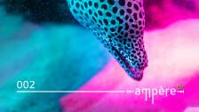 Audio «Von Bern bis Incheon: Die zweite Folge «Ampère» umspannt die Welt» abspielen
