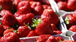Audio «Erdbeeren jetzt setzen» abspielen.