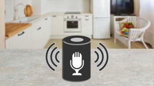 Audio «Smart Speaker: Der persönliche Assistent für zu Hause» abspielen.