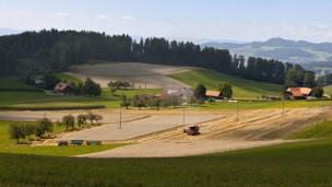 Audio «Bauern im Spannungsfeld zwischen Ertrag und Artenvielfalt» abspielen.
