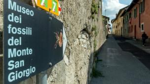 Audio «Monte San Giorgio» abspielen.