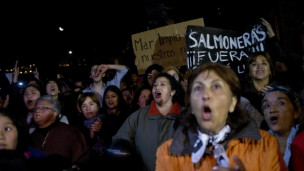 Audio ««Die Lachszucht in Chile ist ein grober Eingriff in die Natur»» abspielen.