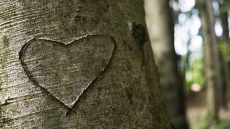 Audio ««Marina – Das Schicksalsdrama, das uns lehrt, was Liebe ist» 1/2» abspielen.