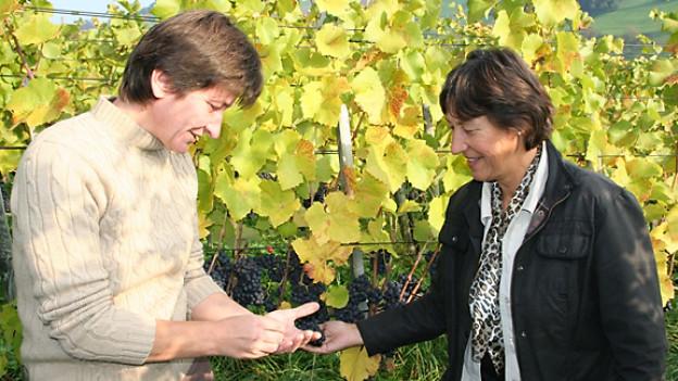 Nicole Robatel und Romi Wieser begutachten die Weintrauben.