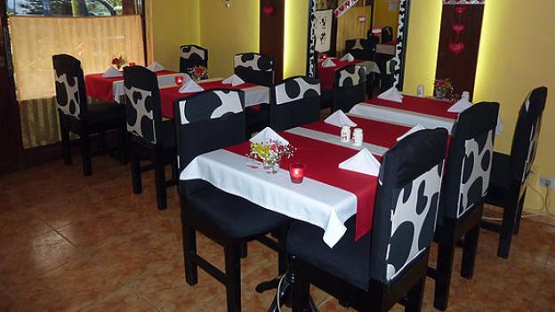 «little swiss» heisst das Restaurant in Kairo, indem Charlotte Ginter Dörig Fondue und Raclette anbietet.