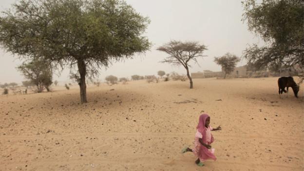 UNICEF schätzt, dass über eine Million Kinder dieses Jahr an Unterernährung leiden und Hilfsgüter benötigen. Die Hungersnot rührt vom mangelnden Regen im 2011 her - die Ernte fiel zu spärlich aus.