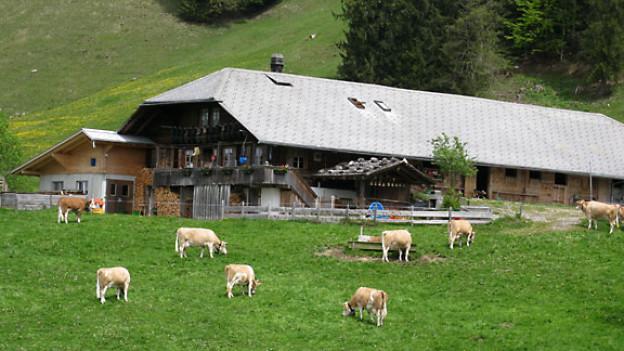 Alp Hergisallmend, Gemeinde Reichenbach (BE).