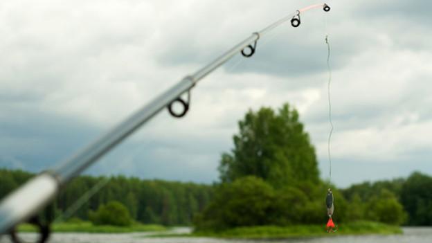 Faszination Fischen: Ein anspruchsvolles Hobby