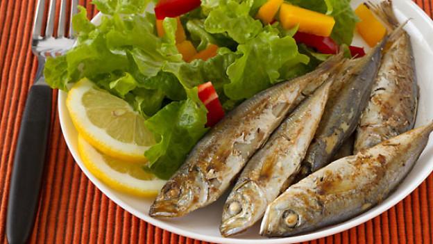 Fische essen mit gutem Gewissen?