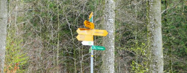 In welche Richtung soll es weitergehen?