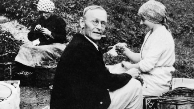Herman Hesse bei der Weinernte in Montagnola im Tessin.