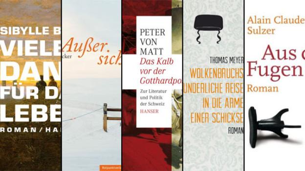 Ausschnitte der Buchcovers zu den nominierten Werken für den Schweizer Buchpreis 2012.