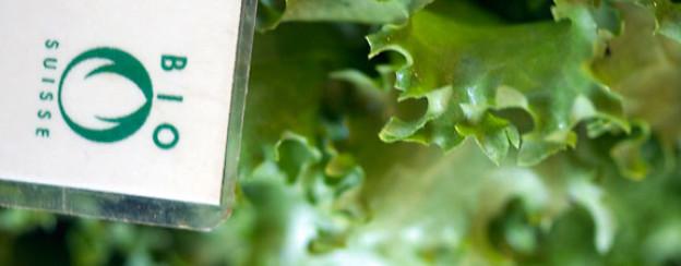 Der Vitamingehalt unterscheidet sich von Gemüsesorte zu Gemüsesorte mehr als von Bio- zu Nicht-Bio-Gemüse.