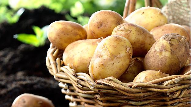 Machen die Kartoffel-Suppe «chüschtig»: Schüblig, Emmetaler und Kabis..