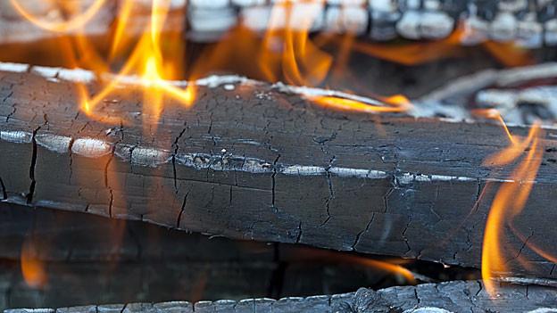 Man darf nur trockenes, unbehandeltes Holz direkt aus dem Garten oder Wald verfeuern.