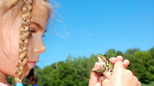 Damit Wünsche in Erfüllung gehen braucht es oft mehr als einen Frosch....!